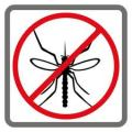 Repel bugs naturally!