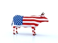 All-American bull