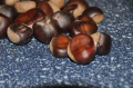 "A good chestnut should be rounded and that beautiful brown color that can only be ""chestnut brown""."