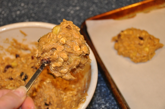 vegan oatmeal cookie