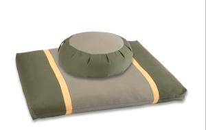 cushion copy